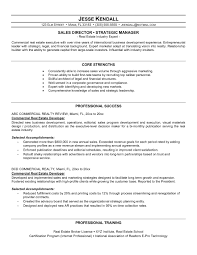 Sample Resume For Sales Executive In Real Estate Best Of Manager