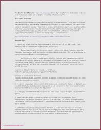 29 Awesome Photos Of Resume Professional Summary Examples Customer ...