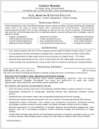 Executive Resume Template Sales By Charley Howard