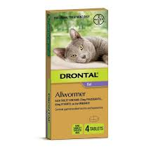 Drontal Cat All Wormer 4kg 4 Tab Petbarn Pet Barn In Fulton Takes Natural Approach To Pet Food Baltimore Sun Dating Mackay City Warehouse Shops Stores 49 Juliet Barn Owl Goes Missing Farnworth The Bolton News Mirvac Retail Toombul Shopping Centre Welcome Petbarn Well Good Inflatable Protective Collar Large Pets Artcraft Adoptions Humane Society Of El Paso Wellness Core Breed Dog Food Irish Wolfhound Photolog