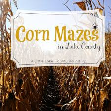 Pumpkin Farms Illinois Goebberts by Corn Maze Round Up 2014 Little Lake County