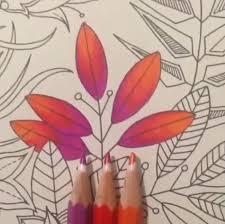Colouring Adult Coloring Books Pencil Art Secret Gardens Book Garden Tips Johanna Basford