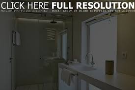 Home Depot Bathroom Cabinet Hardware by Barn Door Bathroom Home Depot Door Barn Door Locks Stunning