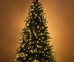 Snowy Dunhill Christmas Trees by Astonishing Zoom Ft Frosted Finley Pre Lit Led Tree Ft Frosted