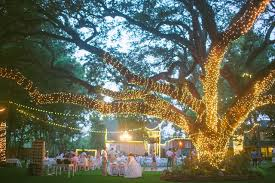 There Really Are No Hard And Fast Rules For Selecting Lights This Purpose Trees Can Be Wrapped In Just About Any Kind Of Decorative Light