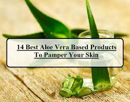 14 Best Aloe Vera Products for Face and Body In India Reviews