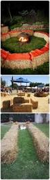 Sauvies Island Pumpkin Patch Groupon by Best 25 Hay Maze Ideas On Pinterest Fall Fest Halloween
