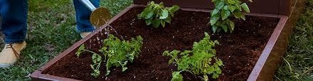 Raised Bed Soil Calculator by How Much Soil Does Your Raised Bed Garden Need Miracle Gro
