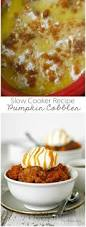 Can Guinea Pigs Eat Cooked Pumpkin Seeds by 27 Best Pumpkin Everything Images On Pinterest