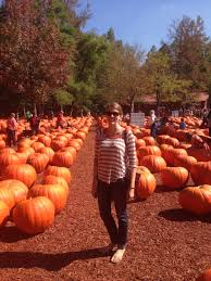 Burts Pumpkin Farm 2015 by 5 Things To Do In Atlanta In The Fall U2014 Sunny Sundays