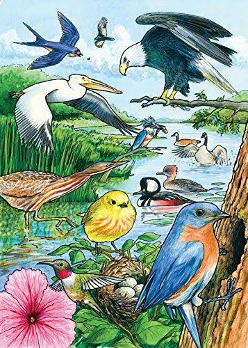 Outset Media Games North American Birds Tray Puzzle - 35pc