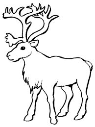Click To See Printable Version Of Reindeer Caribou Coloring Page