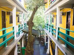100 Woods Sao Paulo Che Lagarto Hostel Morro De So Brazil Book Now For