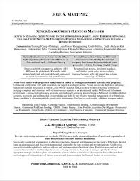 Resume Examples For Credit Manager Sales Executive Templates Also Card Rhsidemcicekcom Reference Samples Rhsnatchnetcom