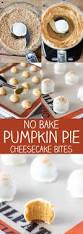 Keebler Double Layer Pumpkin Cheesecake Recipe by Best 25 No Bake Cheesecake Filling Ideas Only On Pinterest No
