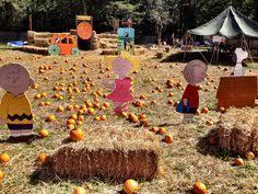 Sarasota Pumpkin Festival Location by Fruitville Grove Pumpkin Festival In Sarasota Fl Places To