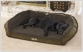 Petco Dog Beds by Self Warming Dog Beds Agreeable Heated Cat Bed Walmart Cute Cats