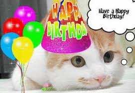 animated Animated GIF page party happy let friend birthday kzoomi