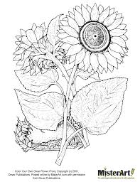 Free Coloring Page Color Your Own Great Flower Prints Book Download Crafts For Kids Dover Books