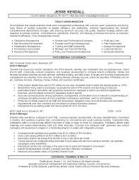 Resume Branch Manager For This Is Retail Store Sample Letsdeliver Co Rh