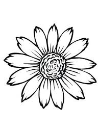 Sunflower Coloring Pages Flowering Head Of Page Simple