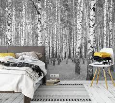 awallo fototapete birkenwald in grau schwarz weiß