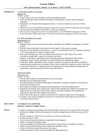 Download MIS Manager Resume Sample As Image File