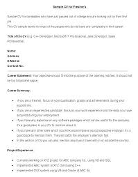 Sample Profile Statements For Resumes Example