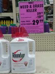 Menards RoundUp Concentrate Weed Grass Killer 1 2 Gallon Coupon 10 Rebate
