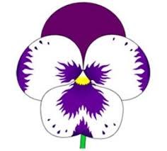 How to Draw Pansies Flower