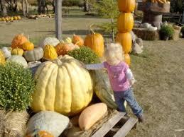 Northeast Iowa Pumpkin Patches by Small Town Iowa Fun U2013 Homegrown Iowa