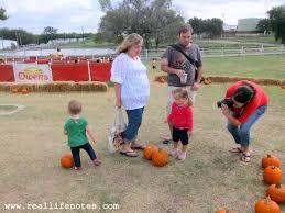 Big Orange Pumpkin Patch Celina Texas by Big Orange Pumpkin Farm In Richardson Tx