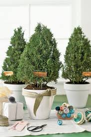 Silver Tip Christmas Tree Bay Area by 100 Country Christmas Decorations Holiday Decorating Ideas 2017
