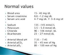 renal function tests