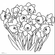 Wonderful Spring Flower Coloring Pages Printable With For Adults Flowers And