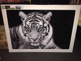 tiger wandbild glas 100x70cm