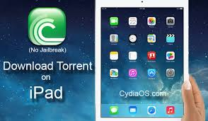 How to Download Torrents on iPad iOS Without Jailbreak