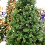 Christmas Trees Kmart Au by Christmas Trees Kmart Boise
