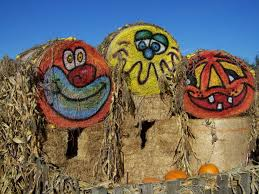 North Plains Pumpkin Patch by 8 Great Pumpkin Patches In Oregon