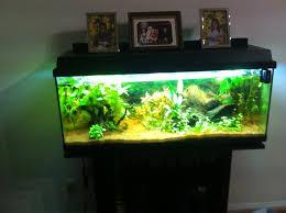ph aquarium eau douce démarrage 120 litres ph qui grimpe avec gh qui descend