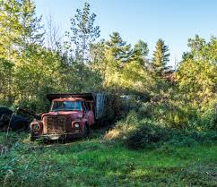Free Images : Tree, Grass, Wilderness, Wood, Trail, Car, Antique ... Old Abandoned Rusty Truck Editorial Stock Photo Image Of Vehicle Stock Photo Underworld1 134828550 Abandoned Rusty Frame A Truck In Forest Next To Road Head Axel Fender 48921598 And Pickup Retro Style Blood Brothers With Kendra Rae Hite Youtube Free Images Farm Wheel Old Transportation Transport In The Winter Picture And At Field Zambians Countryside Wallpaper Rust Canada Nikon Alberta Vintage Serbian Mountain Village Editorial
