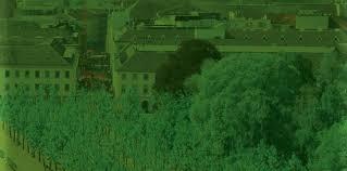 broschüre der grüne fächer indd