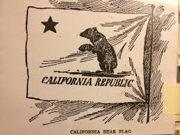 Vintage California Standing Bear Flag Book Illustration