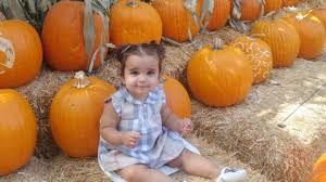 Free Pumpkin Patch Fort Collins by Rob Kardashian Shares Sweet Pic Of Daughter Dream At A Pumpkin