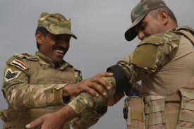 I Mef Dts Help Desk by Combat Training To Combat Troops U2013 The Advise And Assist Mission