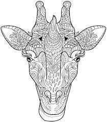 Animal Coloring Pages Adults Photo Gallery For Website