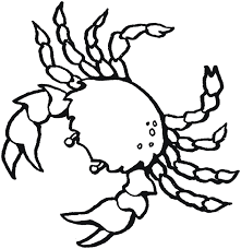 Animal Coloring Pages Bats Crab