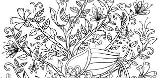 Bird Colouring Book Antonia Woodward Childrens Project