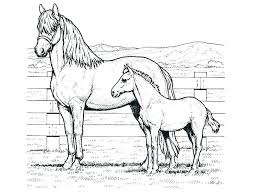 Realistic Horse Coloring Pages As Awesome Color Page Pictures Printable