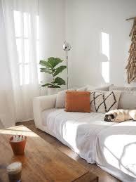 lichtspiel altbau altbauwohnung mops sofa